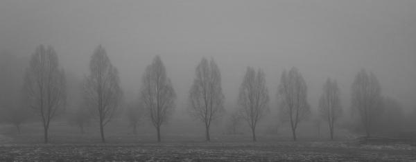 Klimawandel und geringere Luftverschmutzung erklären weltweiten Nebelschwund