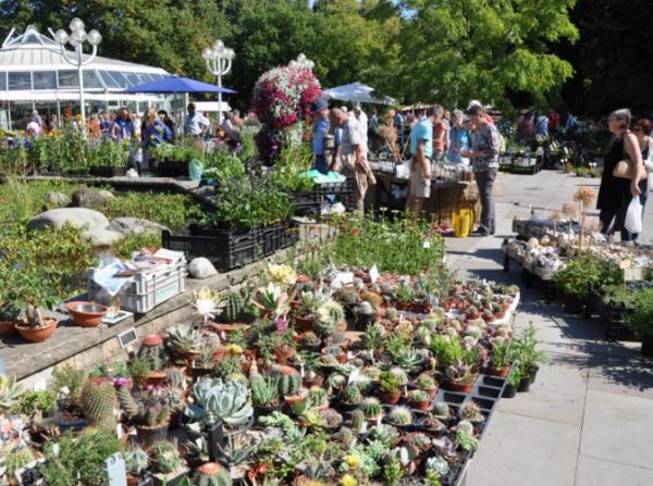 Frühjahrs-Pflanzenraritätenmarkt im Grugapark