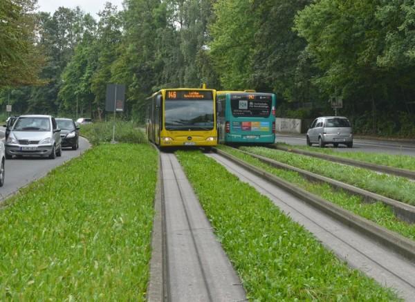 Spurbusanlage an der Wittenbergstraße wird beseitigt. Neues Grün und alte Dieseltechnik, aber barrierefrei.