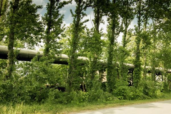 EU gibt Förderung für Fernwärmeschiene Rhein-Ruhr frei